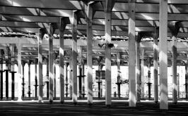 bosco-di-cemento-barcellona-2013_ridimensiona